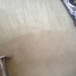 Carpet-Cleaning-Martinez