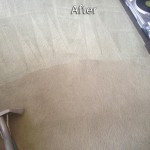 Martinez-Carpet-Cleaning-Company