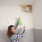 Martinez-Mold-Remediation