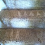 Martinez-Stairs-Carpet-Cleaning