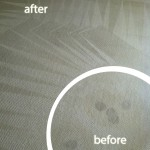 Martinez-Wine-Stain-Carpet-Cleaning